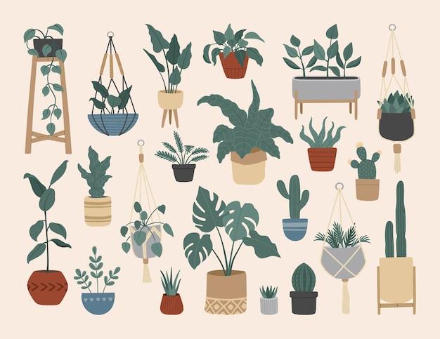 Satz stilvolle vintage zimmerpflanzen
