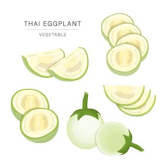 Satz thailändische auberginen-gemüsescheiben. illustrierte elementillustration der organischen und gesunden nahrung. Premium Vektoren