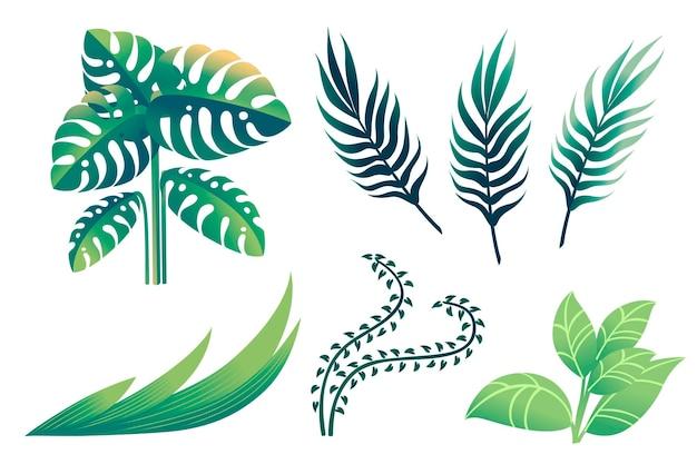 Satz tropische grüne blätter mit der flachen vektorillustration der unterschiedlichen form lokalisiert auf weißem hintergrund.