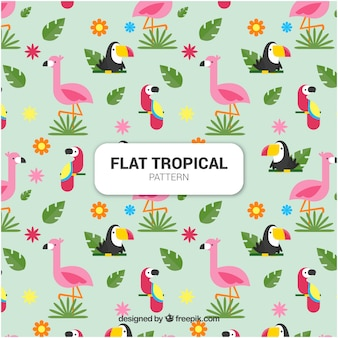 Satz tropische muster mit vögeln in der flachen art