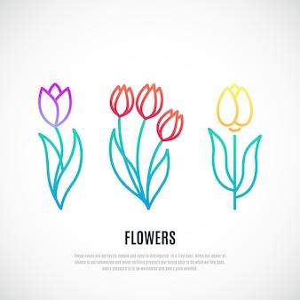 Satz tulpen isolierte illustration