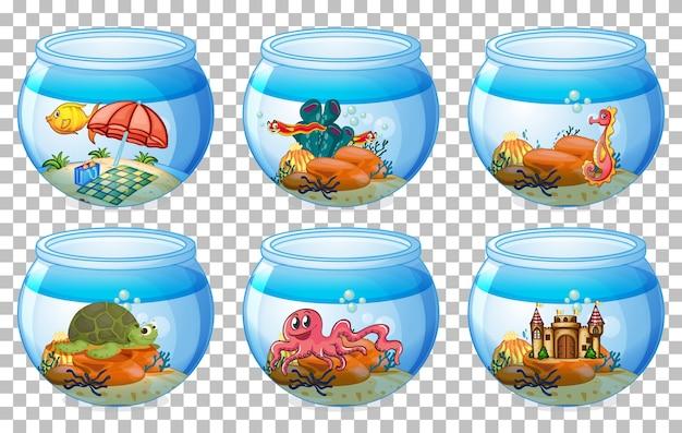 Satz verschiedene aquariumbehälter lokalisiert auf transparentem hintergrund