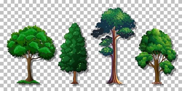 Satz verschiedene bäume auf transparentem hintergrund