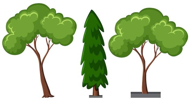 Satz verschiedene bäume lokalisiert auf weißem hintergrund