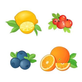 Satz verschiedene früchte mit blättern. orange, zitrone, blaubeere und rote johannisbeere. ganze früchte und hälften