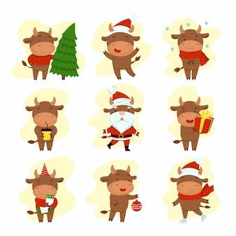 Satz verschiedene glückliche niedliche stiere. frohes neues jahr. chinesisches neujahrssymbol. weihnachtskarte. 2021 jahre. flache karikaturillustration lokalisiert auf weißem hintergrund