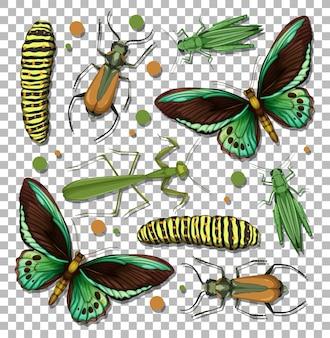 Satz verschiedene insekten auf transparentem hintergrund