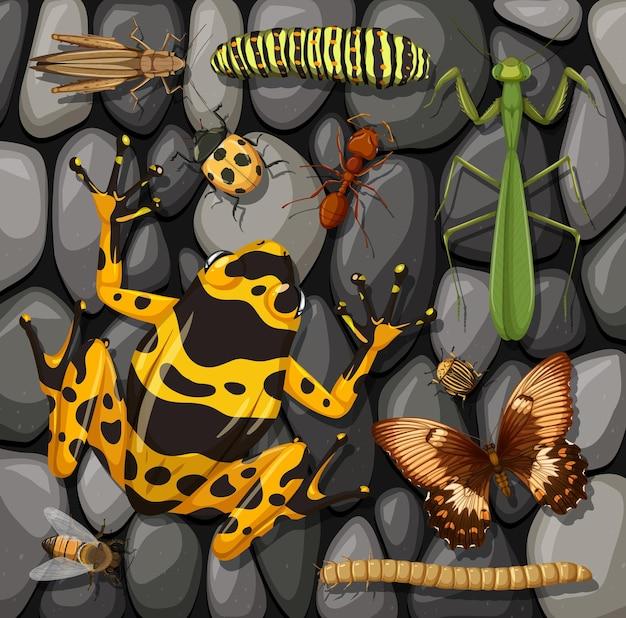 Satz verschiedene insekten lokalisiert auf steinbeschaffenheit Premium Vektoren