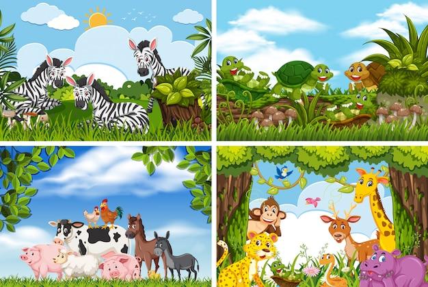 Satz verschiedene tiere in den naturszenen