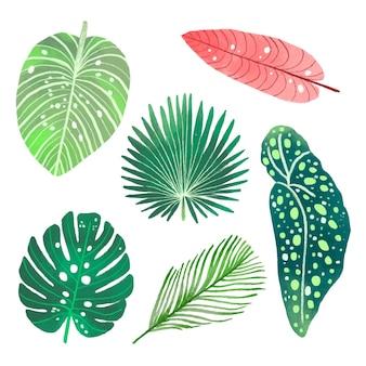 Satz verschiedene tropische blätter