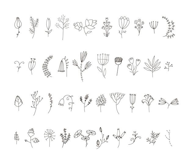 Satz von 40 handgezeichneten linienblumen und blumen