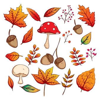 Satz von autumn leaves with colorful hand drawn style