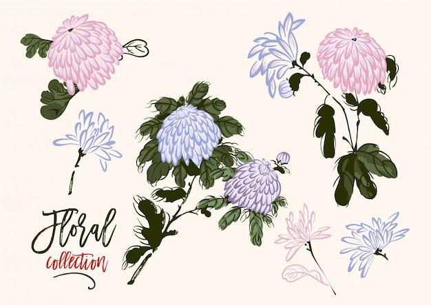 Satz von blühenden chrysanthemen im chinesischen stil