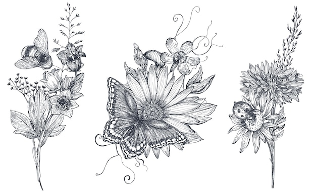Satz von drei vektorblumensträußen mit handgezeichneten schwarz-weiß-kräutern, wildblumen und insekten, schmetterling, biene, im skizzenstil.