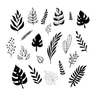 Satz von exotischen blättern des schwarzen trendigen gekritzels lokalisiert auf einem weißen hintergrund. botanische vektorgrafik, skizzenelemente für das design.