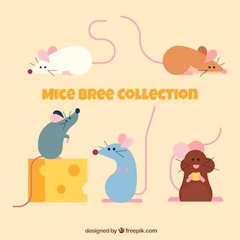 Satz von flachen mäusen züchtet