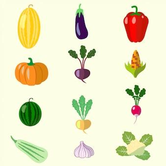 Satz von gemüse, melone, kürbis, rüben