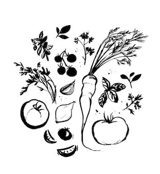 Satz von gemüse und kochkräutern handgezeichnete tintenillustration zeichnungen für rezepte