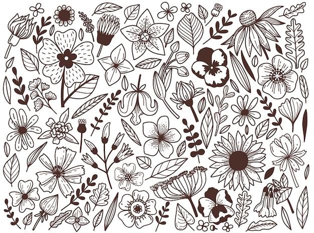 Satz von handgezeichneten wildblumen in einem grafischen stil.