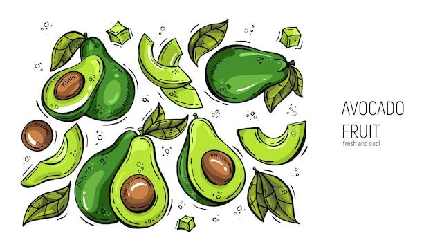 Satz von handzeichnung avocado