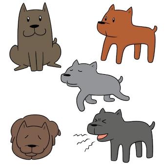 Satz von hund