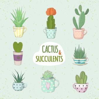 Satz von kaktus