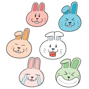 Satz von kaninchen gesicht