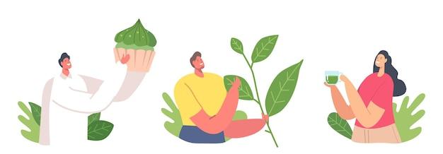 Satz von leuten, die matcha-tee-konzept trinken. winzige männliche und weibliche charaktere mit riesigen grünen teeblättern und bäckerei. frau mit cup-getränk-gesundem getränk, erfrischung. cartoon-vektor-illustration