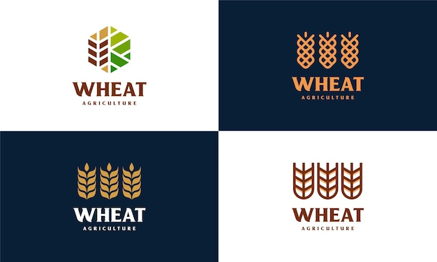 Satz von luxus-korn-weizen-logo-konzept, landwirtschaft weizen-logo-vorlage-vektor-symbol