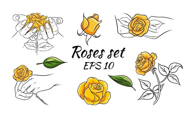 Satz von mustern mit rosen