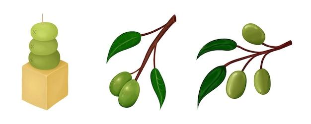 Satz von oliven auf einem zweig und kapapa isolierte objekte