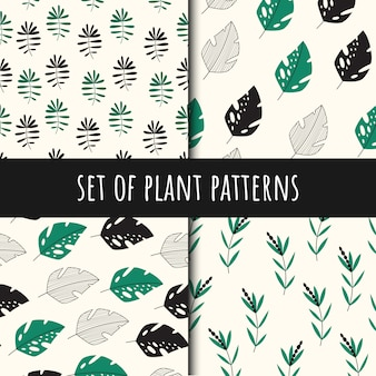 Satz von pflanzen nahtlose muster