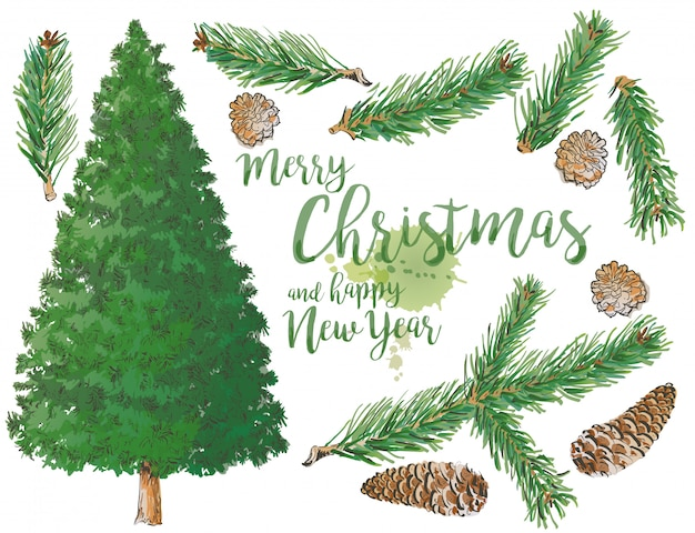 Satz von pine branch tree und fichte branch elemente mit kegel