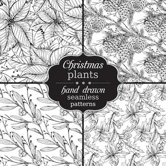 Satz von vier nahtlosen mustern mit handgezeichneten winterpflanzen.