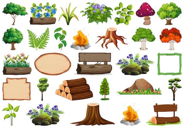 Satz von zierpflanzen und elementen