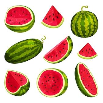 Satz wassermelonen lokalisiert auf weiß
