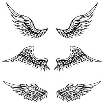 Satz weinleseflügel auf weißem hintergrund. elemente für logo, etikett, emblem, zeichen, markenzeichen.