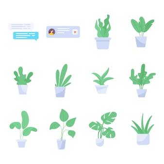Satz zimmerpflanzen flach