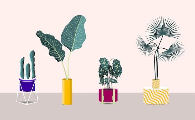 Satz zimmerpflanzen. sammlung von zimmerpflanzen in töpfen.
