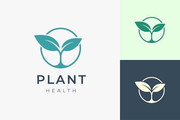 Saubere und einfache pflanzenlogo-vorlage für bio oder landwirtschaft