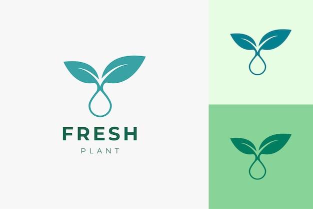 Saubere und einfache pflanzenöl-logo-vorlage für gesundheitspflege oder schönheitsserum