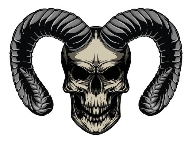 Schädel horn abbildung