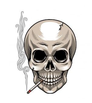 Schädel mit zigarette auf weiß