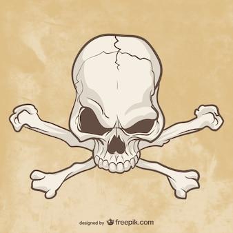 Schädel und knochen zeichnung