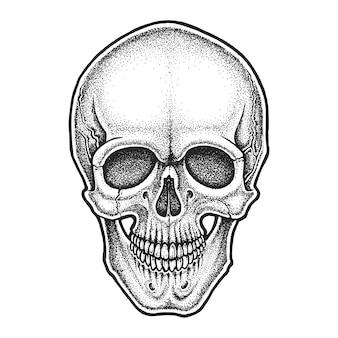 Schädelillustration im dotwork-stil
