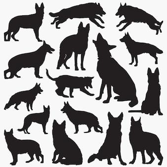 Schäferhund-hundeschattenbilder