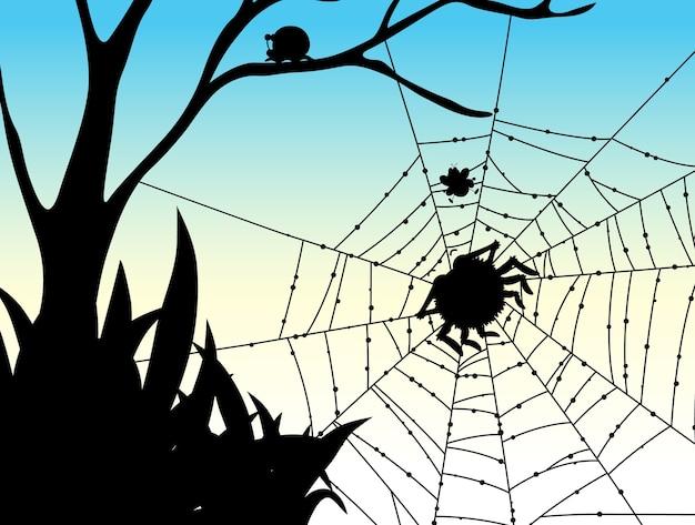 Schatten des spinnennetz-naturhintergrunds