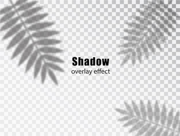 Schatten überlagern den transparenten effekt von blättern. kreativer überlagerungseffekt