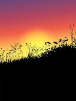 Schattenbild des grases und der blumen gegen einen sonnenuntergangshimmel