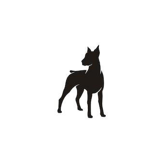 Schattenbild des stehenden dobermann-pinscherhundes